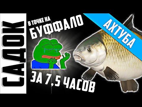 Русская Рыбалка 4 - РР4 | БУФФАЛО – САДОК ЗА 7,5 ЧАСОВ | р. Ахтуба