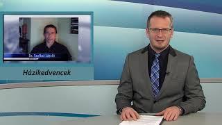 TV Budakalász / Budakalász Ma / 2020.03.25.