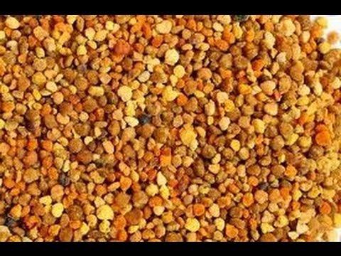 Los proteínas las grasas los hidratos de carbono en los productos de la alimentación pública