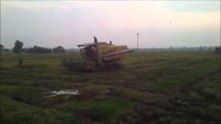 Mesin Padi 8060 Dan 1545-S Di Sungai Dua (Selasa 7 10 2014)