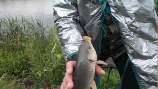 Рыбалка на баме в чубовке 2020 г