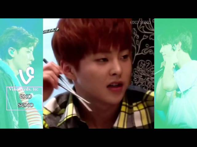 EXO VINES COMPILATION 2016 {PART 1} 엑소