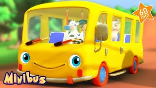 The Bus Song For Kids! Children Songs & Nursery Rhymes For Babies In English | Minibus
