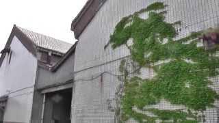 「おっぱいバレー」綾瀬はるか・ロケ地・少年たちの秘密基地