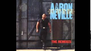 Aaron Neville - Can't Stop My Heart From Loving You (Reggae Summer Mix)