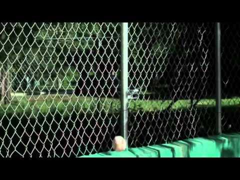 Ver vídeoSíndrome de Down: Comercial Amigo