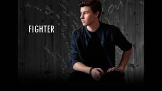 Shawn Mendes Ft. Alan Walker -  Fighter ( Lyrics )