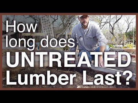 Video How long does untreated lumber last as a garden bed?