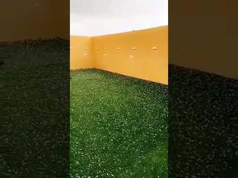 فيديو متداول.. لحظة تساقط البرد في حفر الباطن