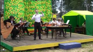 Денис Сергеев на празднике гармони. 26.07.2014.