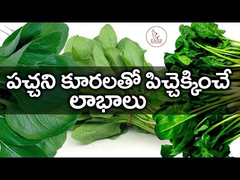 Leaf Vegetables in Hyderabad - Latest Price & Mandi Rates from