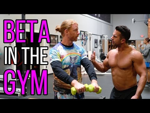 How to Be a Beta Male in the Gym