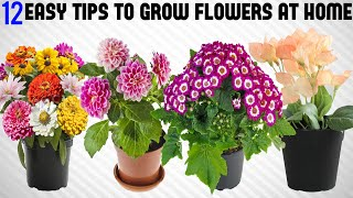 12 Tricks To Grow Tons of Flowers at Home | EASY TIPS