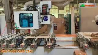 MÁY CNC MỘNG ÂM CNC 3200mm 8 kẹp 5x2 Trục 1 Line WOODMASTER ( 10 Đầu dao cao tốc giá tốt)
