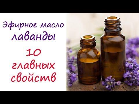 Масло лаванды: 10 главных свойств