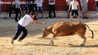 preview picture of video 'Morata de Tajuña capea 1 9 2013'