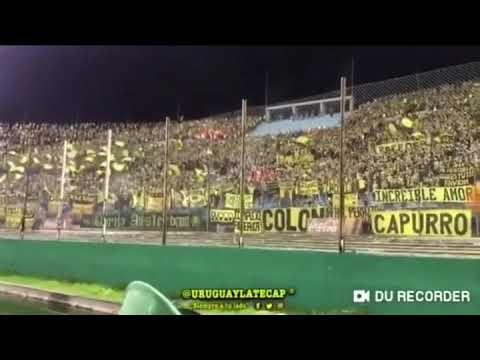 """""""Bolso vos sos un cagón, lo volviste a demostrar 🎺 - Peñarol vs Nacional"""" Barra: Barra Amsterdam • Club: Peñarol"""