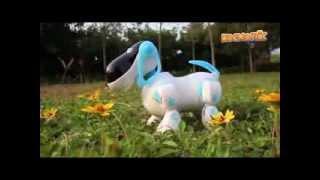 Интерактивная собака-робот 905827 R/2099, пульт ДУ, 20х18х11см, пластик от компании Большая ярмарка - видео