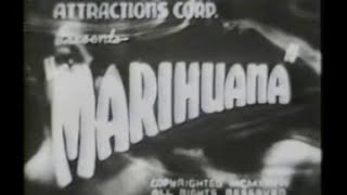 Anti Hemp Propaganda From the 1930s Video