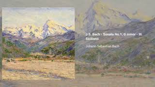 Violin Sonata in G minor, BWV 1001
