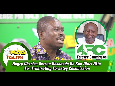 Angry Charles Owusu Descends On Ken Ofori Atta For Frustrating Forestry Commission