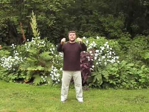 Benefits of qigong arm swinging