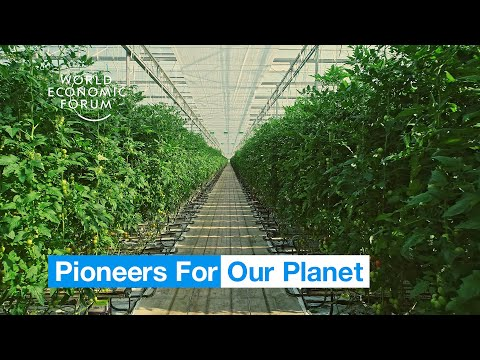 , title : 'Farmers in the Netherlands are growing more food using less resources | Pioneers for Our Planet