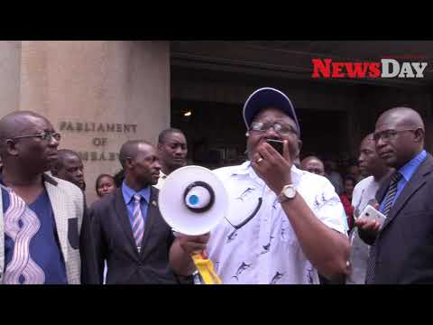 Anti-Zimsec protest: Government under fire