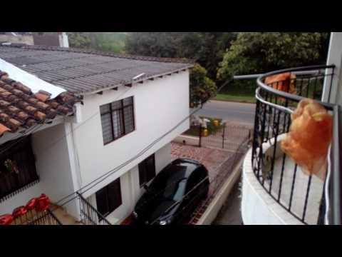 Casas, Venta, Nápoles - $280.000.000