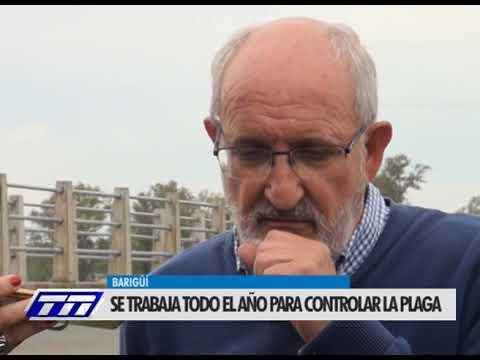 Juan José García