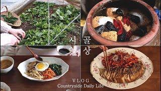 ENG SUB) 시골 일상 │ 채식비빔밥, 된장담그기, 무수분 된장수육
