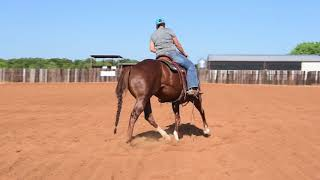 Barrel Racing Tips By The Barrel Racing Discussion Forum
