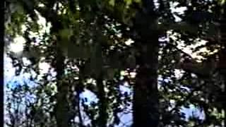 Laçın əməliyyatı - 2 hissə (Qarabağ, 1992 il, oktyabr)