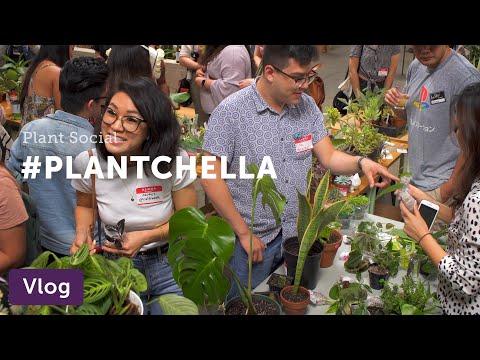 """Vlog 012. LA Plant Swap '19 (a.k.a. """"Plantchella"""")"""