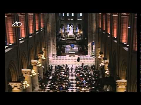 L'appel apostolique - Marguerite Lena
