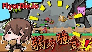 【巧克力】『FLYorDIE.io:不飛則死』 - 弱肉強食!殘酷的自然界!