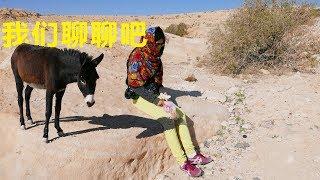 preview picture of video '【约旦vlog】63.i-中国小夫妻徒步沙漠并与当地动物亲切交谈'