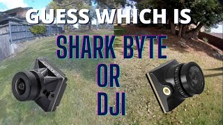 Shark Byte and the new Runcam Micro HD - Guess which is DJI?