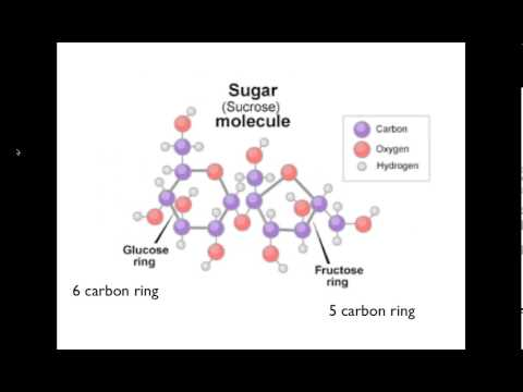Welche Frucht ist für Diabetiker nützlich