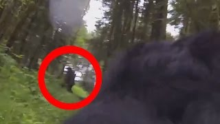 Dog With A GoPro Catches Big Foot On Camera