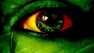 Chuck Fenda - All About Da Weed