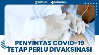 Haruskah Orang yang Pernah Terinfeksi Covid-19 Mendapatkan Vaksinasi? Simak Penjelasan Berikut Ini!