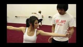 Karate vs Wushu - Fighting Spirit