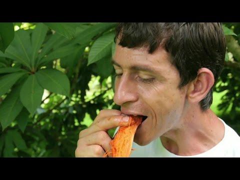 Colecionador de frutas raras cultiva 1,3 mil espécies em sítio de SP