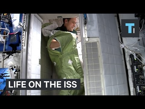 Here's how astronauts carry out simple, every day tasks in space