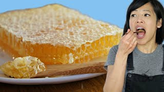 HONEYCOMB - Honey  & Beeswax- Taste Test | The purest form of honey