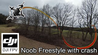 DJI FPV - Noob Freestyle (with crash ???? in the end)