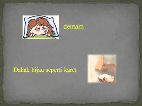 Video PEYAKIT PNEUMONIA