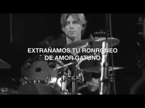 Lovecats  the cure subtítulos en español
