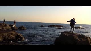 サイプレス上野とロベルト吉野「ヒップホップ体操第二」 (Official MV)